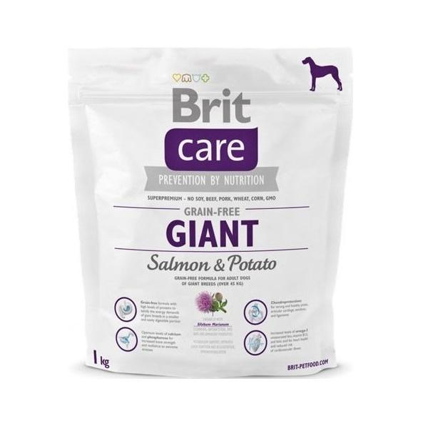 Brit Care Dog Grain-free Giant Salmon&Potato 1kg